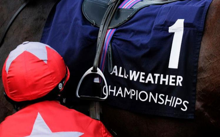 Close up on a horse saddle featuring All Weather Championship branding.