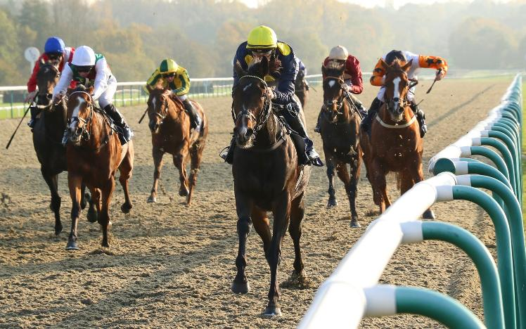 Scentasia Wins at Lingfield Park