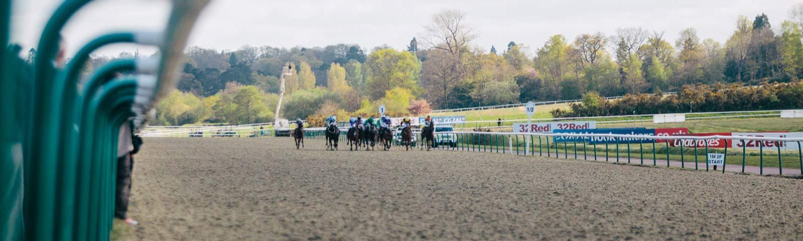 Group of jockeys racing in the distance.