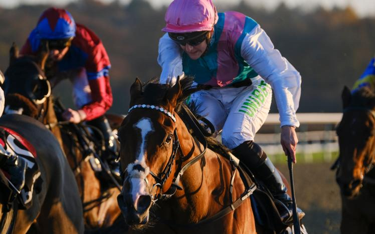 Encrypted winning at Lingfield Park